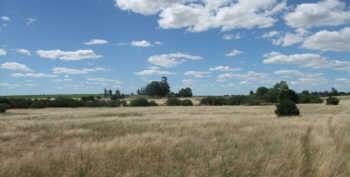 farm in uruguay